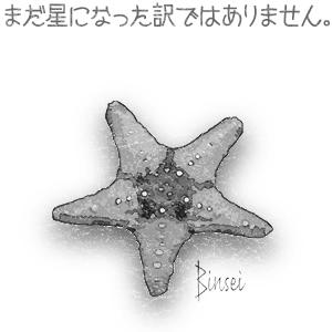 まだ星になった訳ではありません。